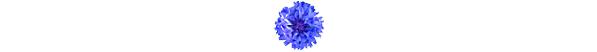 kwiatek_3b